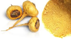Maca Root For Erectile Dysfunction - Close Look at Powder Extract